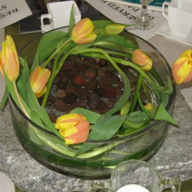 Tulips in the round