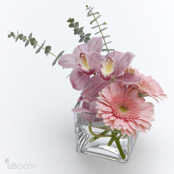 From the Heart Floral | Flower Catalog